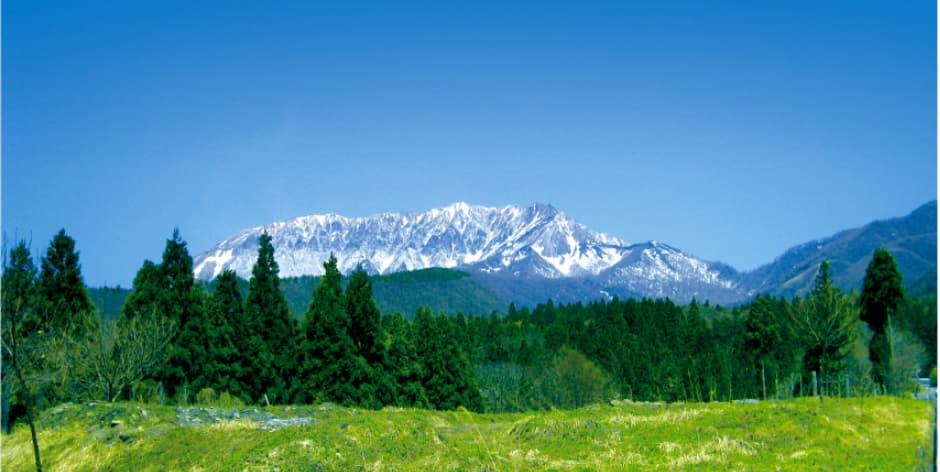 奥大山を遠方から撮った写真 雪のかかった山と緑の木々が見えます